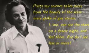 Feynman: wonder in Science